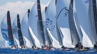 swan regatta