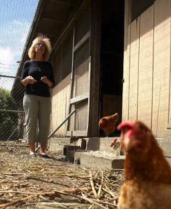 Chicken farming is 24/7, 365 days a year - but eggs are reliable farm products, Pena says.