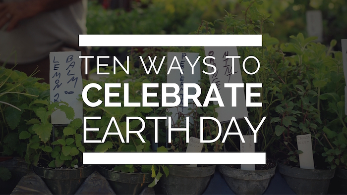 Ten Ways to Celebrate Earth Day