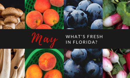 What's Fresh in Florida in May?