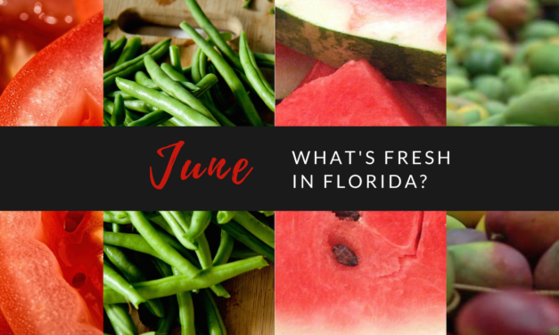 What's Fresh in Florida in June?