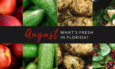 What's Fresh in Florida in August?