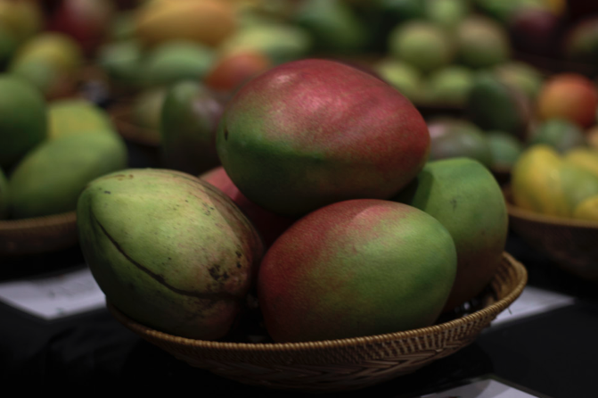 How to Freeze Mangoes So You Can Enjoy Them Year-Round