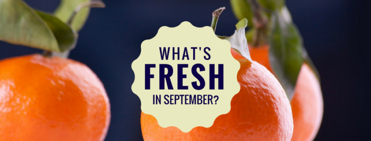 whats fresh in florida in september-2
