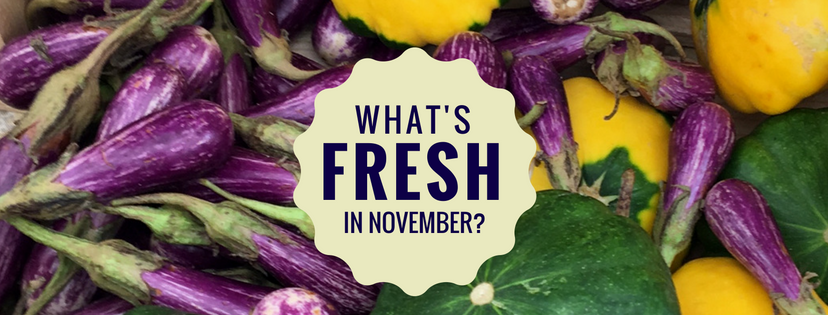 What's Fresh in Florida in November?