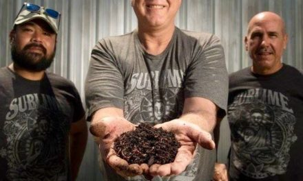 Vermiculture a full-circle business for restaurateur