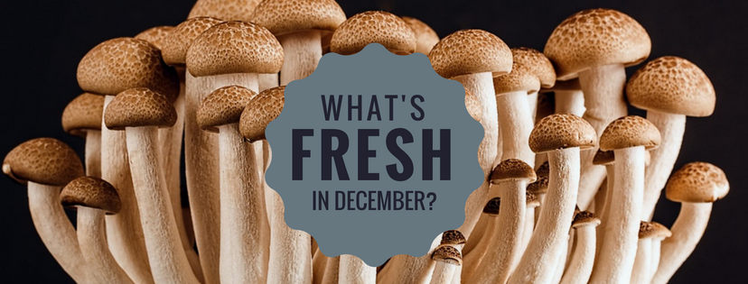 what's fresh in florida in December