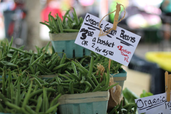 Floridians who want to create vegetable gardens in residential neighborhoods would find it easier to do if the Florida Legislature passes the Vegetable Gardens bill. / Fla. Food & Farm file photo