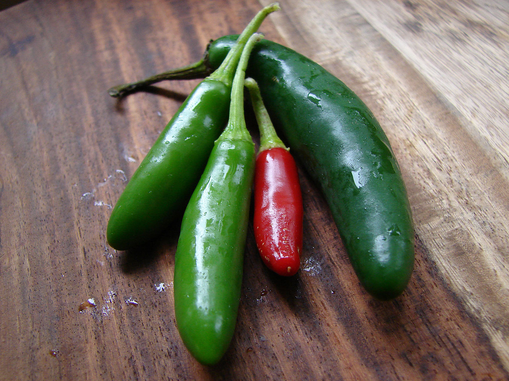 The birds eye or Thai chile is a hot addition to Southeast Asian cuisine.