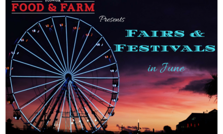 Florida Fairs and Festivals in June