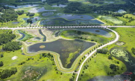 Water reuse project wins Florida Water Environment Association award