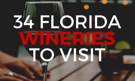 Florida Wineries: Enjoy a Taste of the Sunshine State