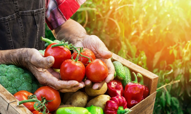 How to Store Fresh Fruits and Vegetables for Best Flavor