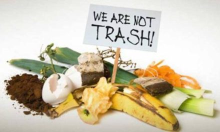 How Your Garbage Disposal/Waste Disposal Unit Impacts The Planet