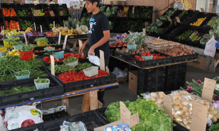 Farmers markets opening up for 2018-19 season