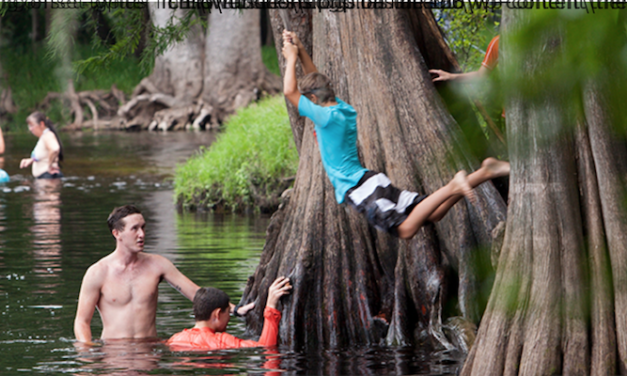 'Florida's springs don't have to fail': H.T. Odum Florida Springs Institute