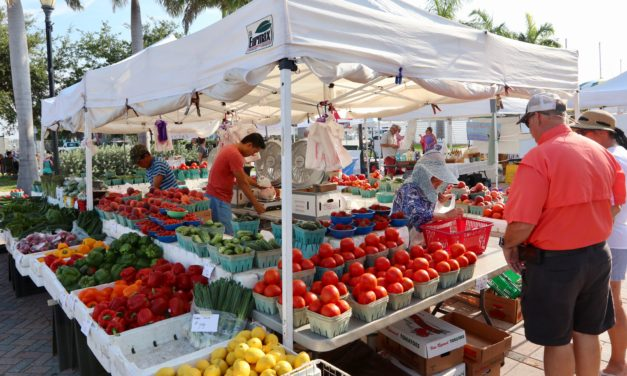 Five great reasons to visit the Downtown Fort Pierce Farmers Market