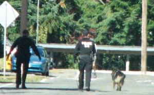 K-9 search for robber