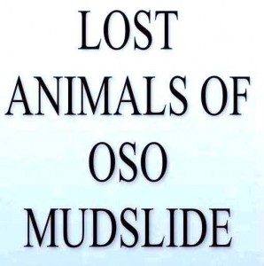 Lost animals from oso slide