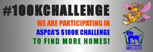100k adoption challenge