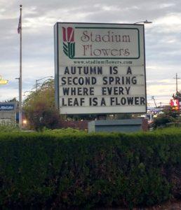 stadium flowers