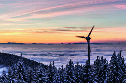 Nordic Companies Helping the Planet