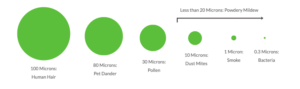 Particulate size comparison