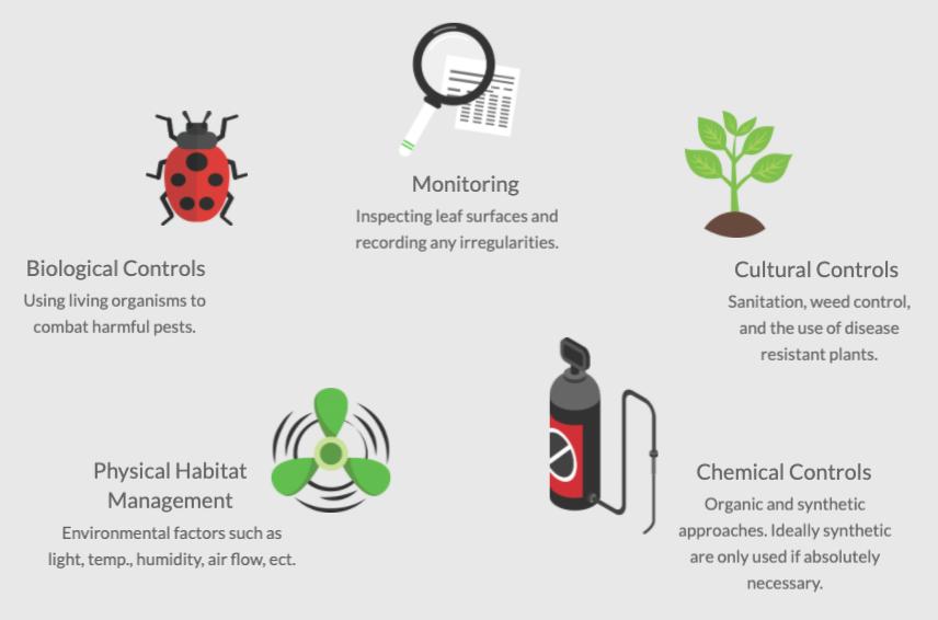 Diagram of integrated pest management