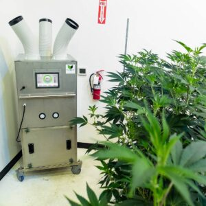 E2 Air Filtration unit in cannabis grow room to help prevent bud rot botrytis and powdery mildew