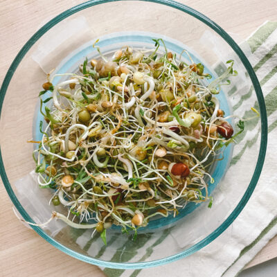 Homemade Sprouts
