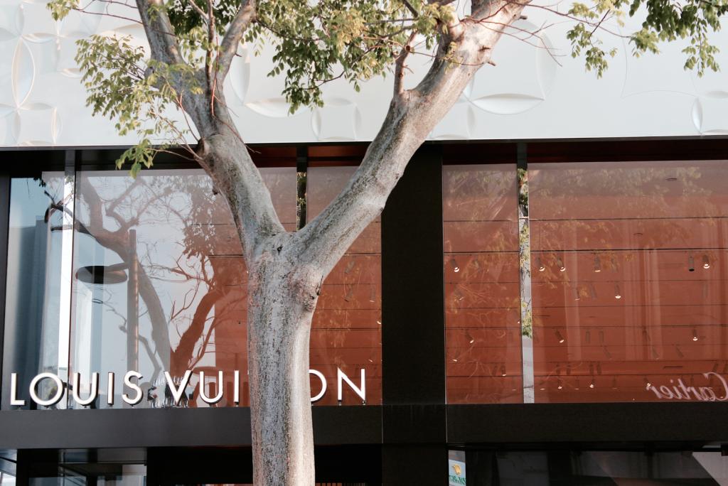 Miami Design District - Luxury Brands - Louis Vuitton