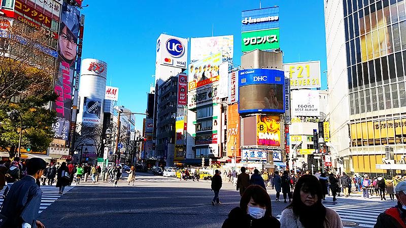 Shibuya Crossing - Tokyo on a budget