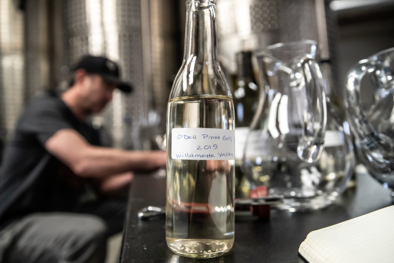 image of the odell wine project white pinot gris blend in a tasting container at the odell wine project production facility