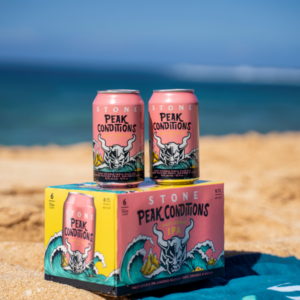 photo of stone brewing peak conditions hazy double ipa on the beach with the ocean in the background