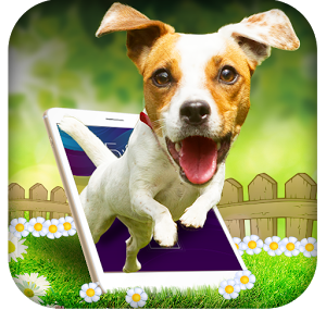 online dog trainer