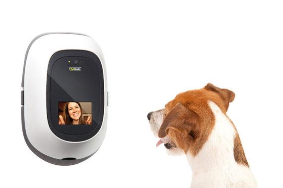 dog behaviorist online
