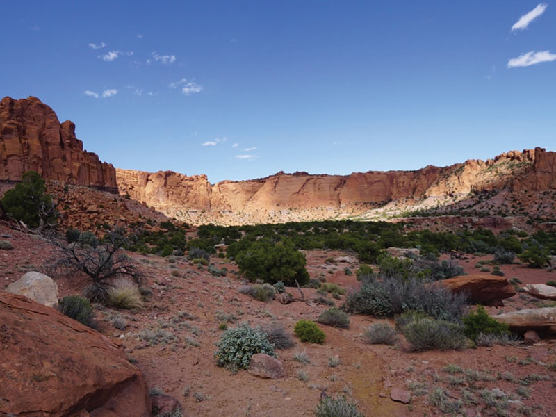 The Jaunt - Capital Reef Day Hike