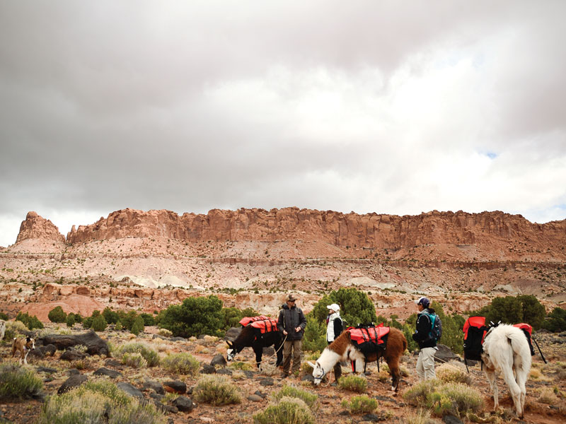 The Sight Seer - Capital Reef Day Hike