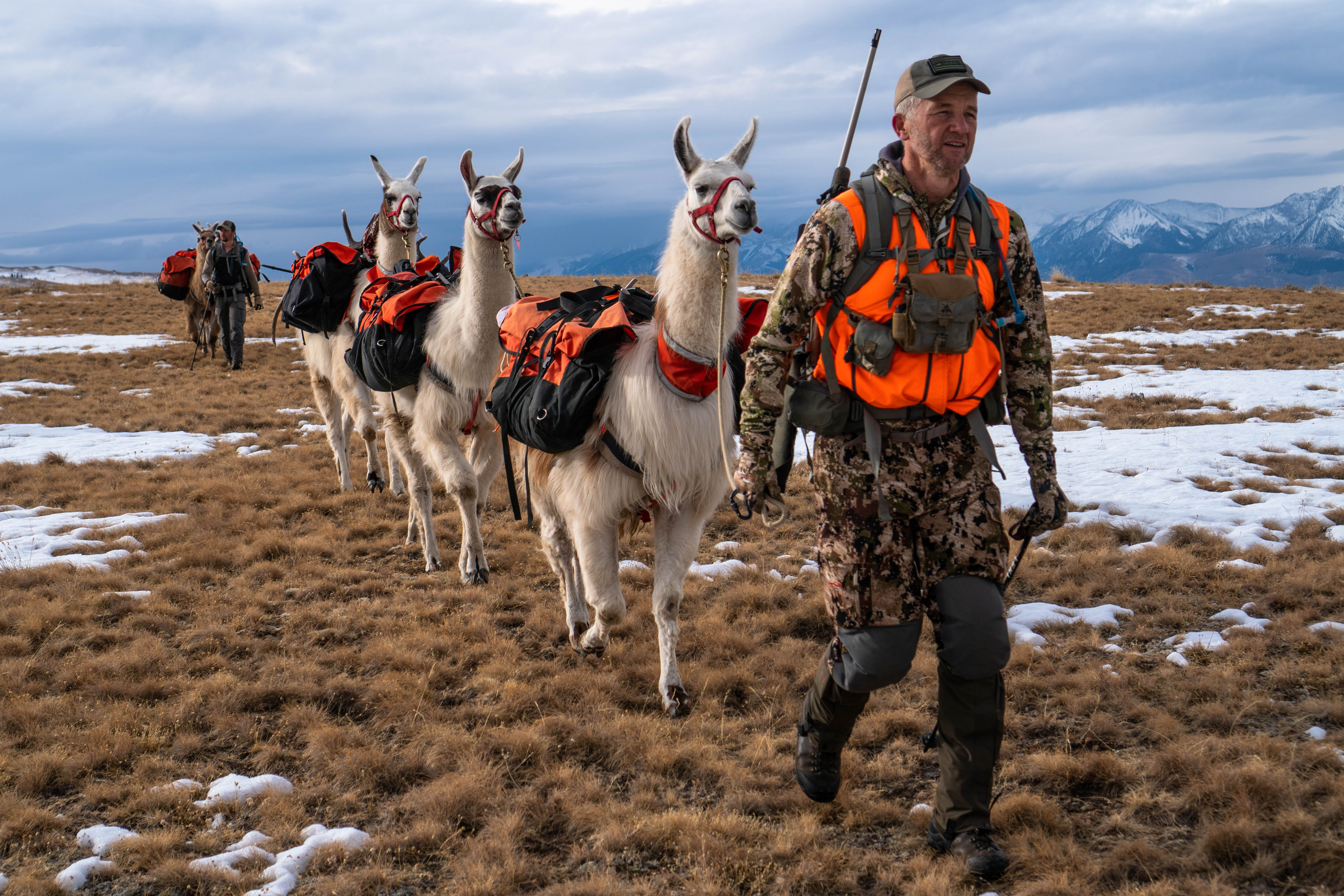 Elk Hunt Randy Newberg