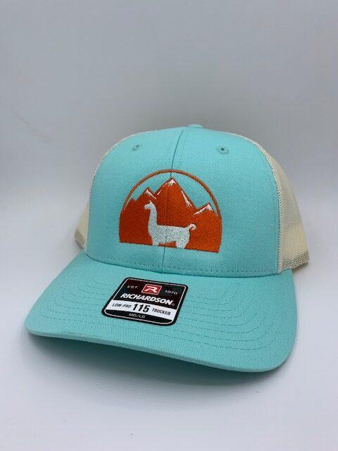 Turquoise WRTL Llama Hat
