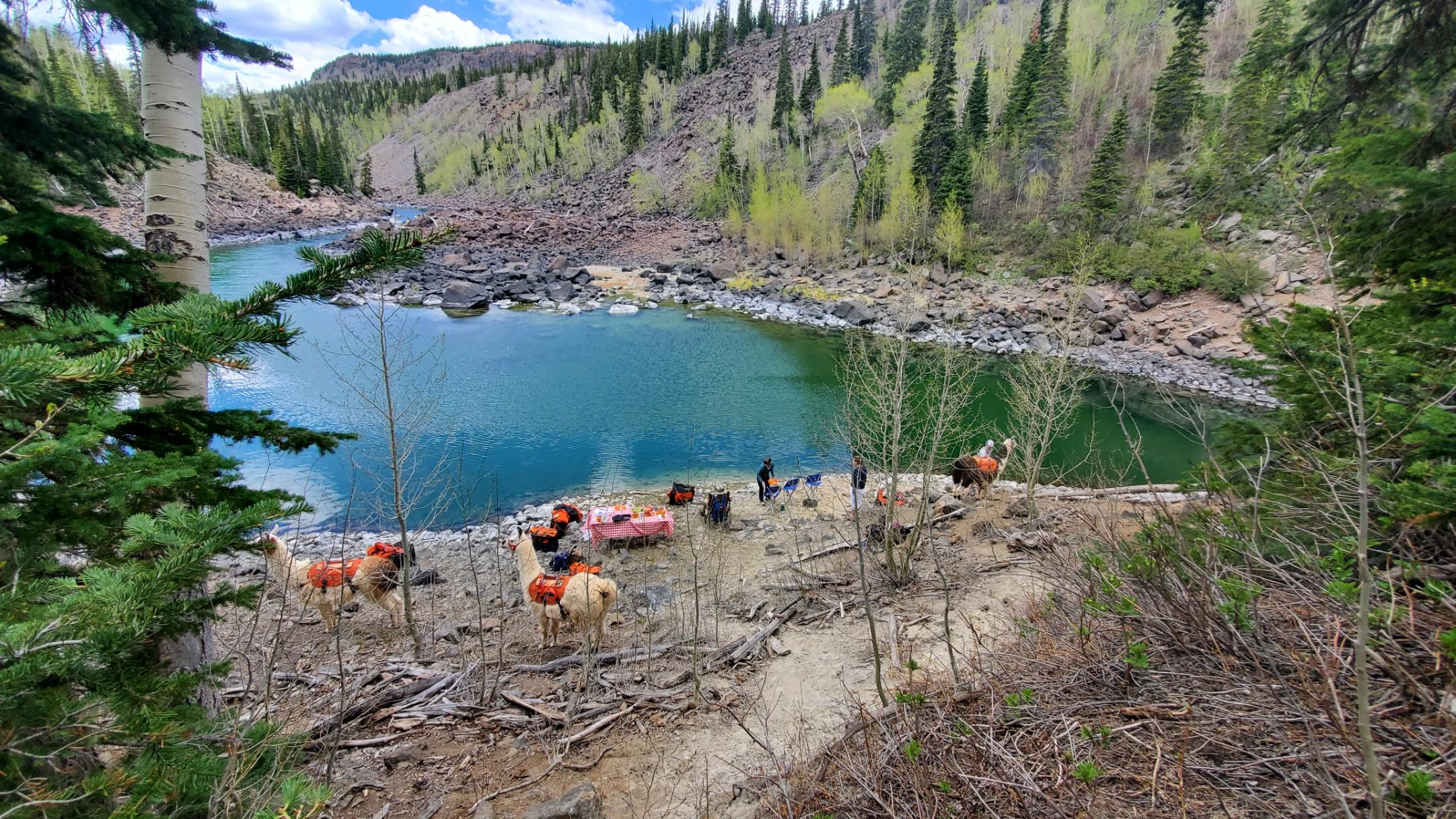 Twin Lakes View Utah