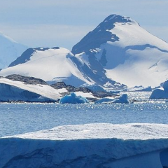 A Fight For Survival: Antarctica