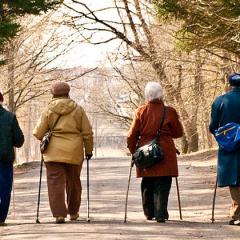 Brain train to help prevent Alzheimer's