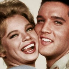 My Love Affair With Elvis