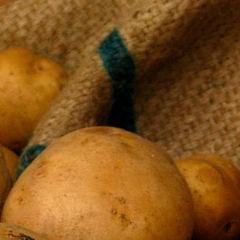 Perfect English Roast Potatoes