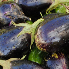 Spicy eggplant recipe from India