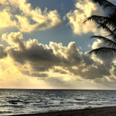 A Song for Sunrise : Bob Marley