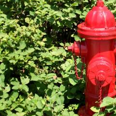 Design Classic : The American Fire Hydrant