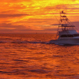 Five Faves : The Florida Keys