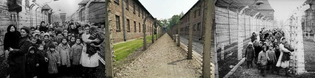 Fence_Auschwitz
